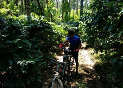 Bike Trek in Chikmagalur