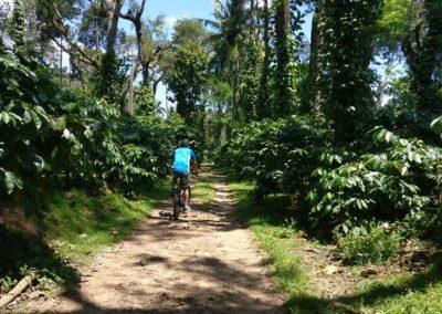 Riverwoods Bike Trek Adventure activities
